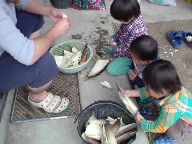 タケノコ族